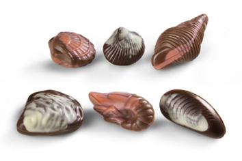 Fruit de mer des roches